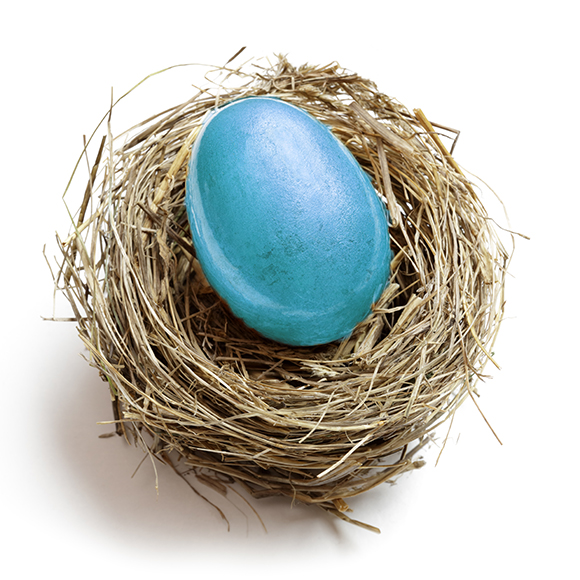Photo of a blue egg - M&N Insurance